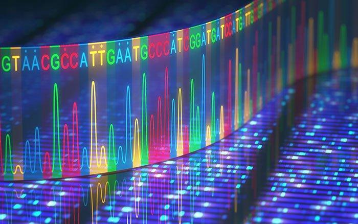 DNA-Sequenzierung: Funktionsweise & Ziel der Methode