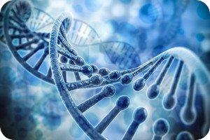DNA-Sequenzierung: Funktionsweise, Ablauf & Ziel des Verfahrens