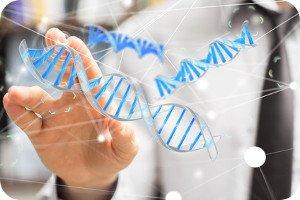 Einfach erklärt: Worin besteht der Unterschied zwischen DNA und DNS?