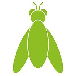 Fruchtfliegen loswerden - 6 Tipps gegen die nervige Küchenplage